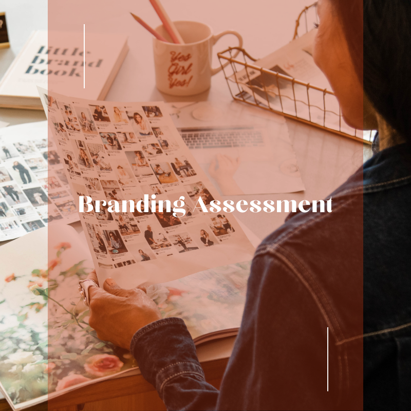 Branding Assessment main image for kalika.com